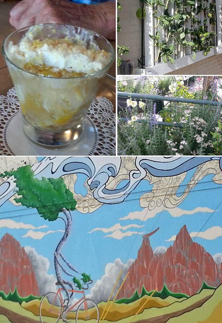 altitude_restaurant_collage